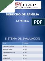 Curso de Derecho de Familiai