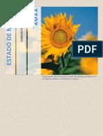 64591092-Contexto-Socioeconomico-en-el-Estado-de-Mexico.pdf