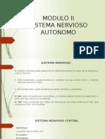 Sitema Nervioso Autonomo