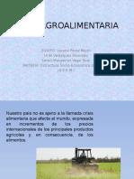 CRISIS AGROALIMENTARIA.pptx