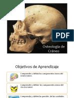 Clase 10 y 11 Osteologia de Craneo, Cara y Cav Comunes (1).pdf
