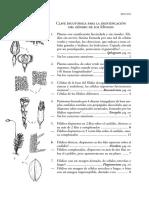 Libro Briofitos (1)