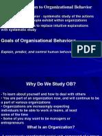 51619346 Organisation Behaviour Ppt