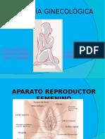 Fin Patologia