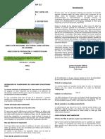 BOLETIN DE CAMU CAMU II.docx