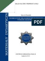 Subkultury Mlodziezowe w Polsce - Wybrane Zagadnienia Nr 131 Smialek M