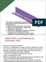 2.1_tratamiento_auditivo_vestibular__282__0