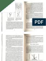 1.1.fizica_nucleara.pdf