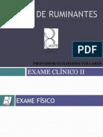 Aula 2 - Exame Clínico II