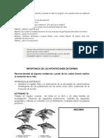 actividades darwin.docx