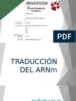 Traduccion Del ARNm