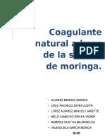 Moringa Proyecto