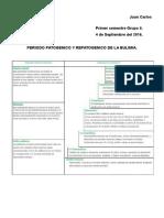Periodo Patogenico y Prepatogenico de La Bulimia