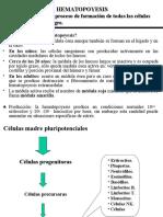 2_sangre   PowerPoint