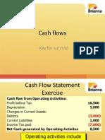 01 Cash Flow Presentation