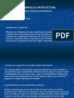 Desarrollo Cognitivo y Vida Laboral 40-65 Años