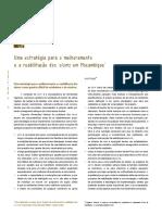 Uma estratégia para o melhoramento e a reabilitação dos slums em Moçambique