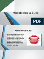 3. Microbiología Bucal (1).pptx