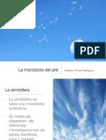 MICRO aire 2.pdf