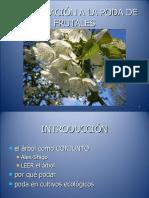 curso poda frutales 14-15-16 marzo 2011.pdf