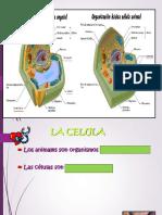 Diapositiva 1_47