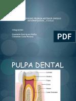pulpadiaposoriginal-111121150959-phpapp01
