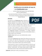 EXTRACIÓN E IDENTIFICACIÓN DE ALCALOIDES DE LAS HOJAS DE COCA