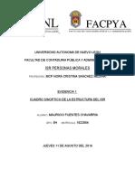 Cuadro Sinoptico Isr Estructura