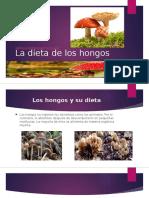 La dieta de los hongos.pptx