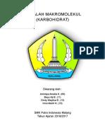 MAKROMOLEKUL (KARBOHIDRAT)