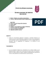 practicareporte.docx