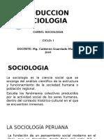 PRODUCCION-SOCIOLOGIA