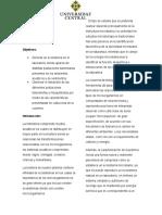 Informe Columna de Winograsdksy (1)