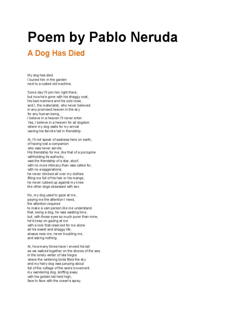 A Dog Has Died | Nature