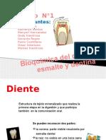 Bioquc3admica Del Diente 0800