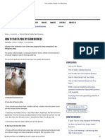 How to Start a Poultry Farm Business