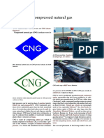 Compressed natural gas.pdf