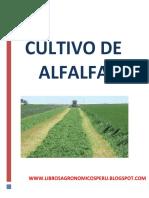Cultivo de Alfalfa (1)