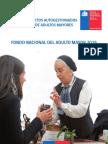 Bases Fondo Nacional Del Adulto Mayor