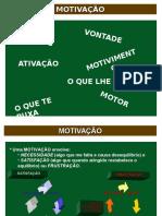 MOTIVAÇÃO 2008 Simples