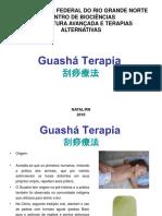 GUASHA-1