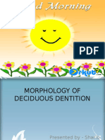 Morphology of Primary Dentition