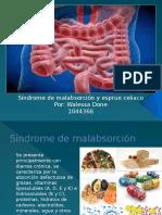 Sindrome de malabsorcion