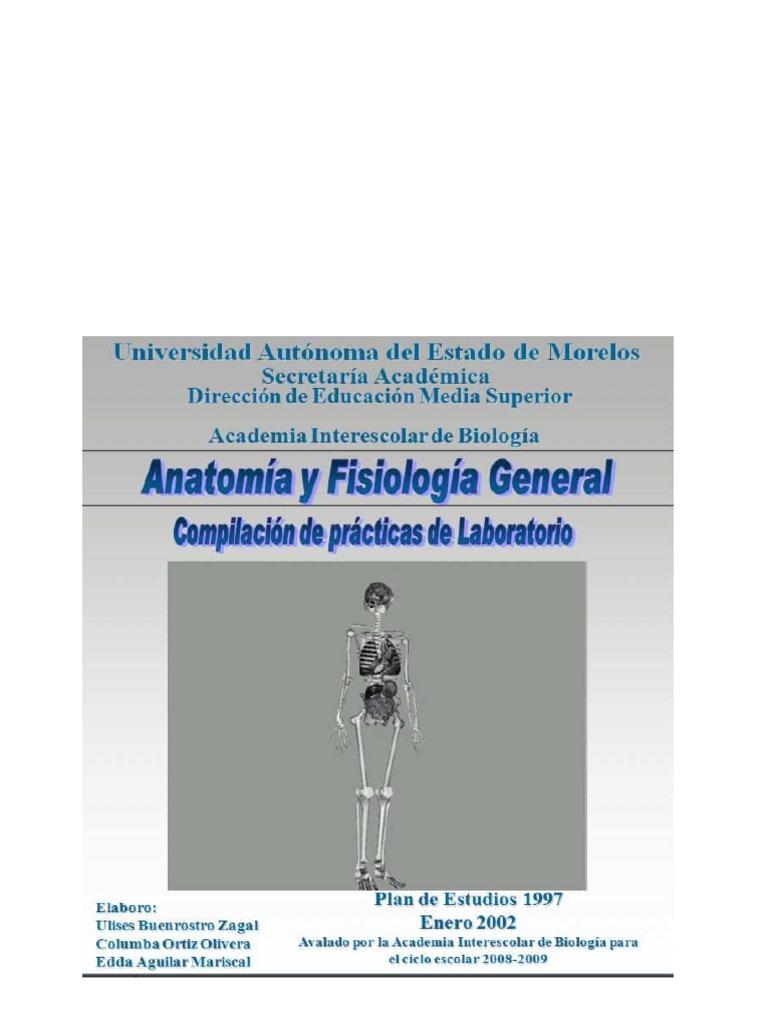 Lujoso Anatomía Humana Y La Versión Feto De Cerdo Manual De ...