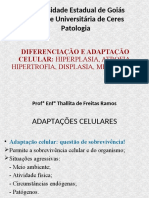 Aula 3 - Patologia