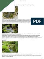 Arte y Jardinería Diseño de Jardines_ Estanques y Jardines Acuáticos