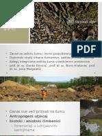 Zaštita Šuma Hrasta Lužnjaka_Knežić