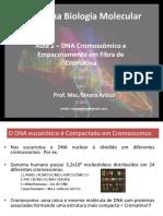 Aula 2 cromossomos e compactação DNA.pdf