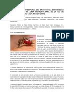 Dengue y vacuna