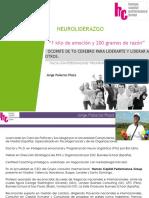 neuroliderazgo-130430061528-phpapp02